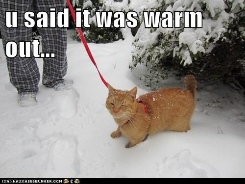 u said it was warm out...