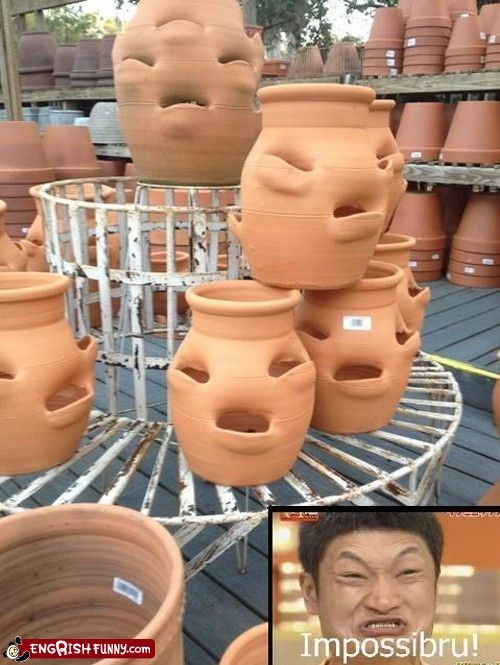 These Pots Were Fired in Waisism