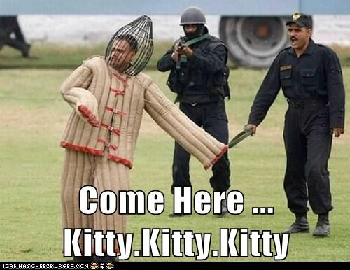 Come Here ... Kitty.Kitty.Kitty