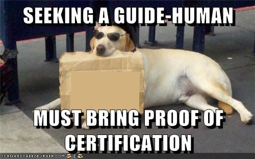 SEEKING A GUIDE-HUMAN  MUST BRING PROOF OF CERTIFICATION