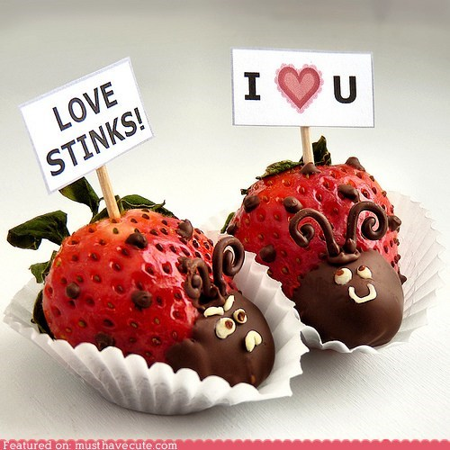 bugs,chocolate,epicute,ladybugs,signs,stink,strawberries,Valentines day