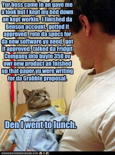 boss,business,Business Cat,caption,captioned,cat,dress shirt,human,productive,shirt,story,superior,work,working