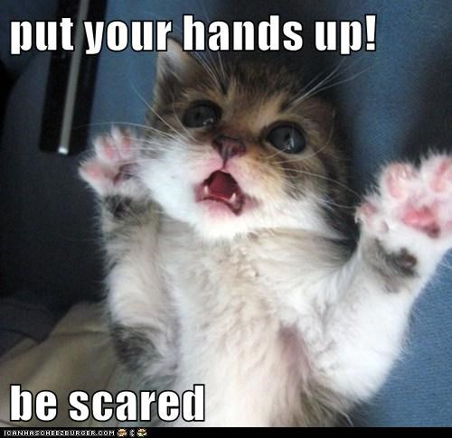 put your hands up!  be scared