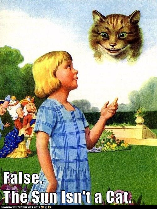 False.                                    The Sun Isn't a Cat.