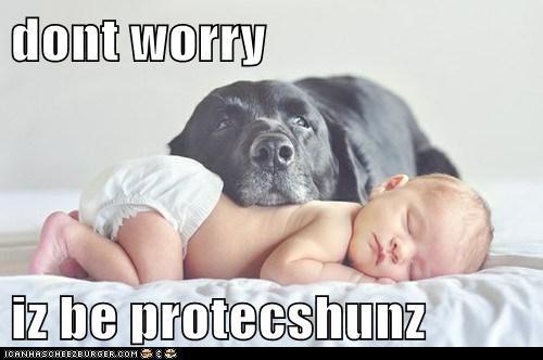 dont worry  iz be protecshunz