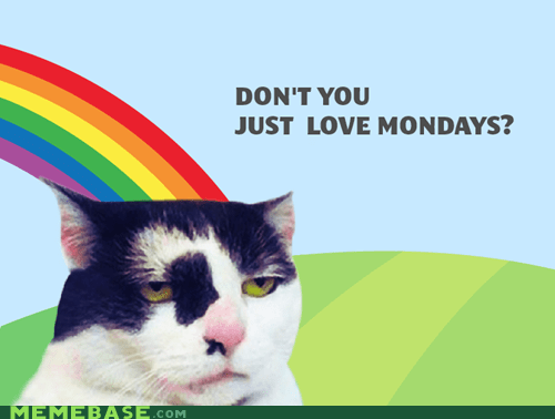 Ironically Content Feline loves mondays