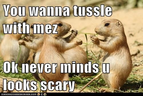 You wanna tussle with mez  Ok never minds u looks scary