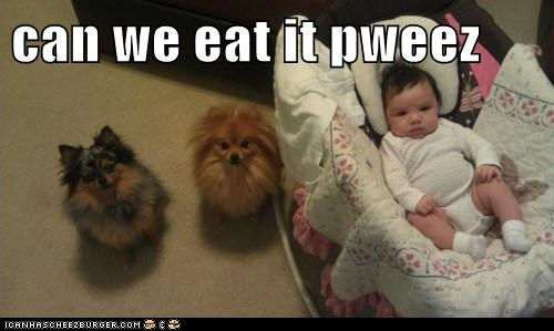 can we eat it pweez