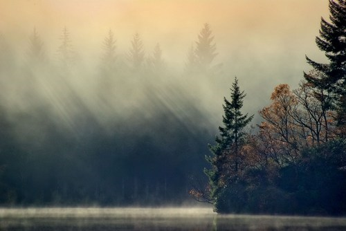 britain,getaways,ik,lock ard,mist,scotland,trees,water