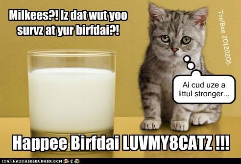 Happee Birfdai LUVMY8CATZ !!!