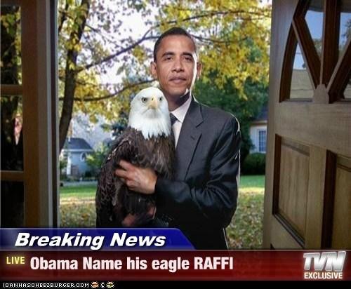 Breaking News - Obama Name his eagle RAFFI