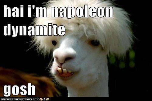 hai i'm napoleon dynamite  gosh