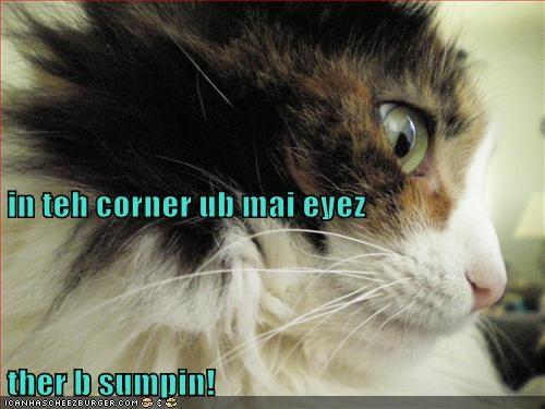 in teh corner ub mai eyez ther b sumpin!