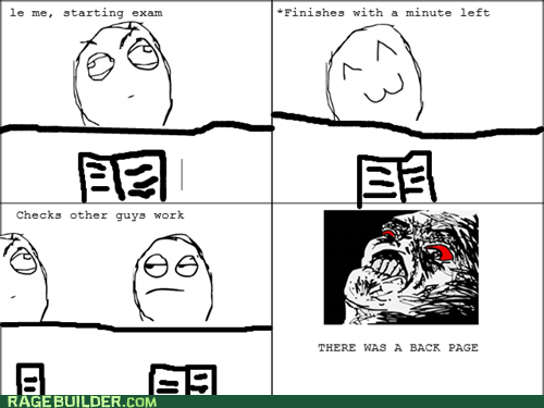 Rage Comics: It Was the Essay Section!