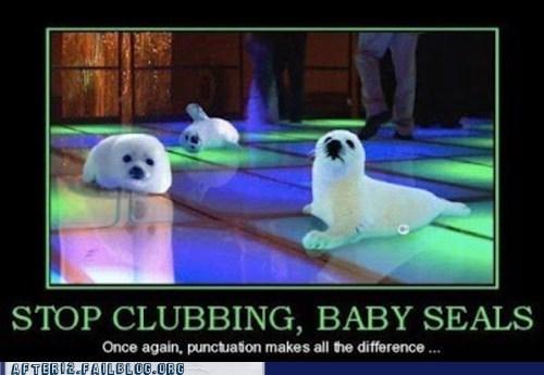 aww,baby seals,club,dance floor,grammar,punctuation,seals