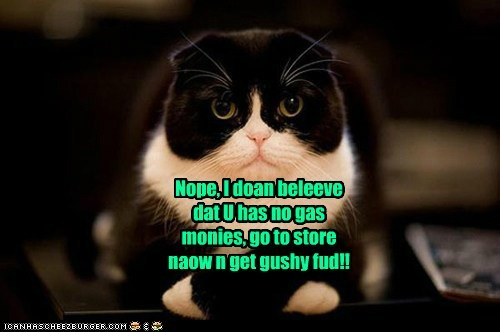 Nope, I doan beleeve dat U has no gas monies, go to store naow n get gushy fud!!