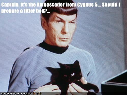 ambassador,captain,cat,Leonard Nimoy,litter box,Spock,Star Trek