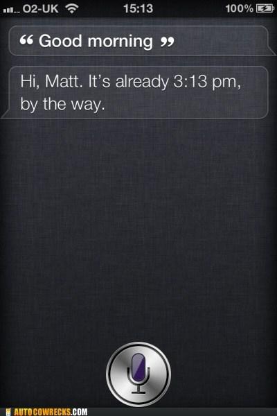 Dammit, Siri, Don't Judge Me