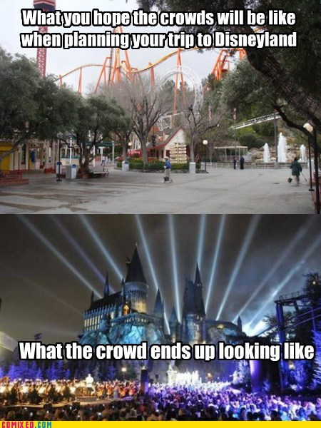 disneyland,impossible,money wasted,vacation