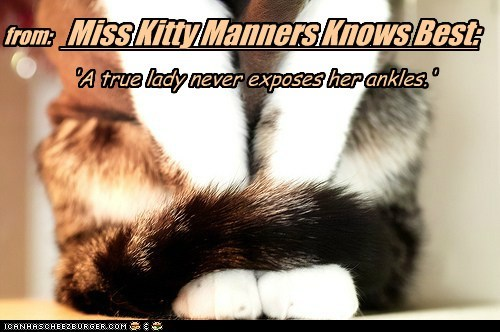 Miss Kitty Manners Knows Best: