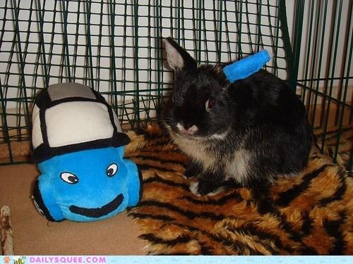 accident,acting like animals,broken,bunny,car,cast,collision,ear,happy bunday,rabbit,toy