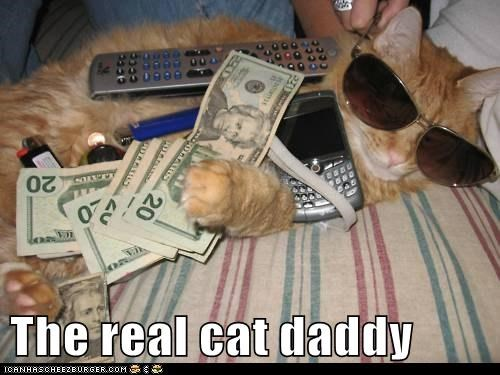 The real cat daddy