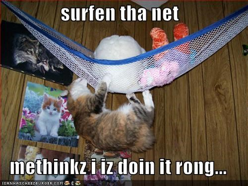 surfen tha net  methinkz i iz doin it rong...