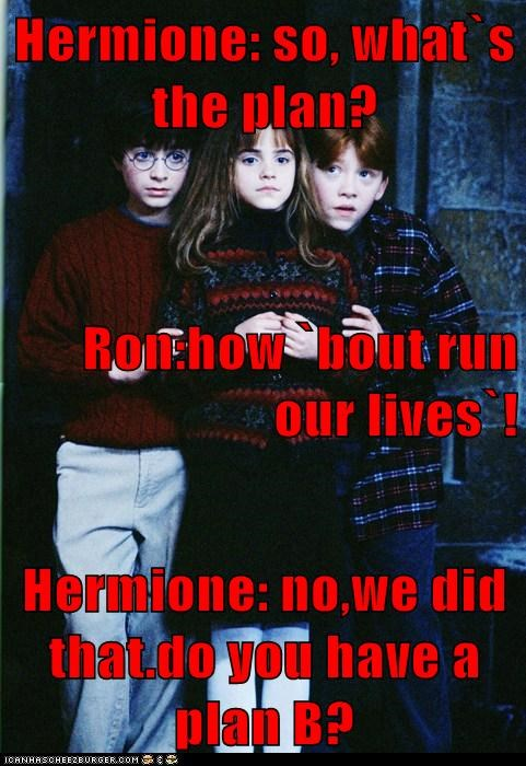 Hermione: so, what`s the plan? Ron:how `bout run our lives`! Hermione: no,we did that.do you have a plan B?