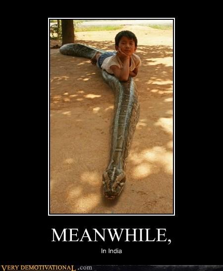hilarious,india,kid,Meanwhile,snake