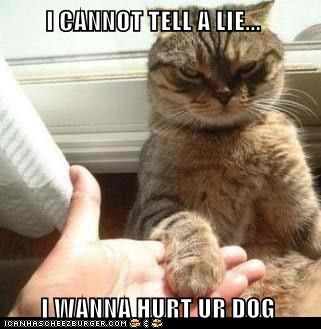 I CANNOT TELL A LIE...         I WANNA HURT UR DOG