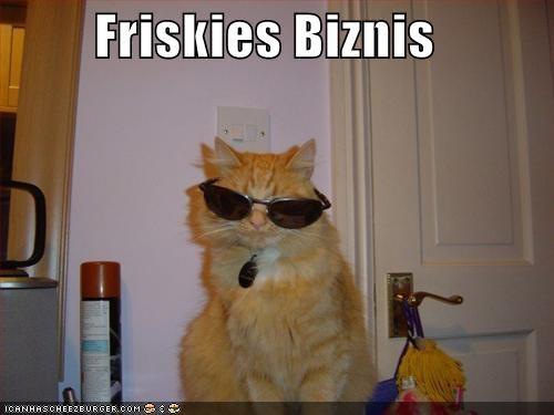 Friskies Biznis