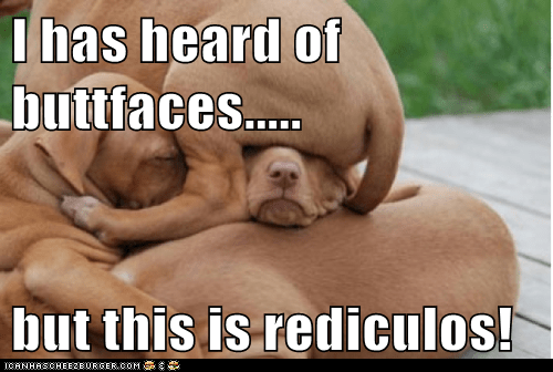 I has heard of buttfaces.....  but this is rediculos!