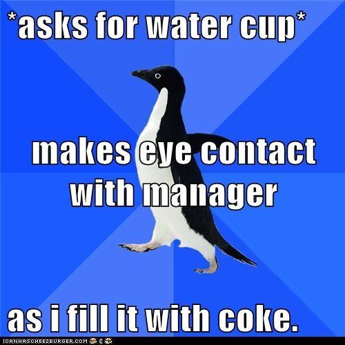 Awkward,coke,drinks,manager,Memes,penguins,refills,restaurants,socially awkward penguin,soda,water