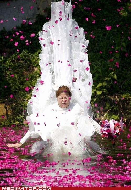 water,flower petals,pond,dress,lake,trash the dress