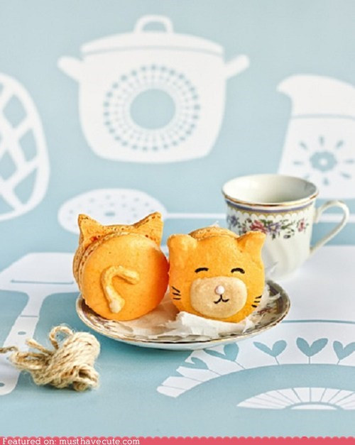 Epicute: Kitty Macarons