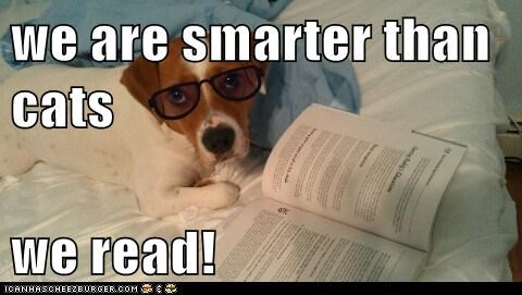 we are smarter than cats  we read!