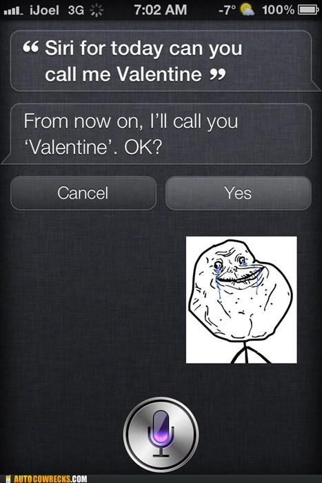 forever alone,siri,valentine,Valentines day