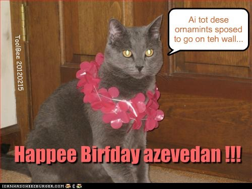 Happee Birfday azevedan !!!