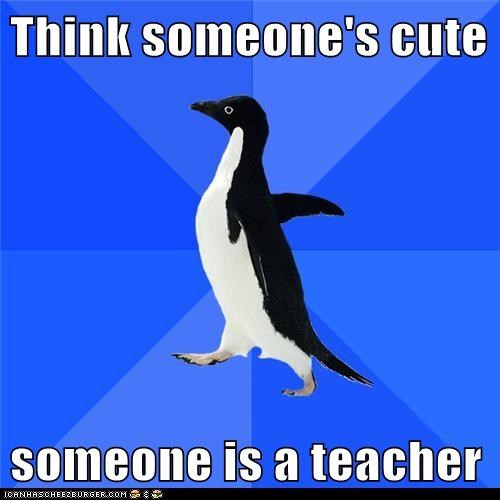 Awkward,cute,penguins,socially awkward penguin,someone,teachers