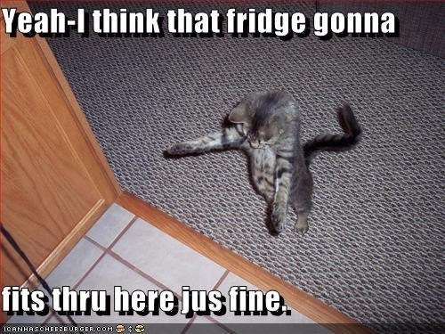 Yeah-I think that fridge gonna  fits thru here jus fine.