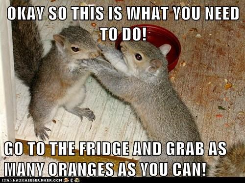 OKAY SO THIS IS WHAT YOU NEED TO DO!  GO TO THE FRIDGE AND GRAB AS MANY ORANGES AS YOU CAN!