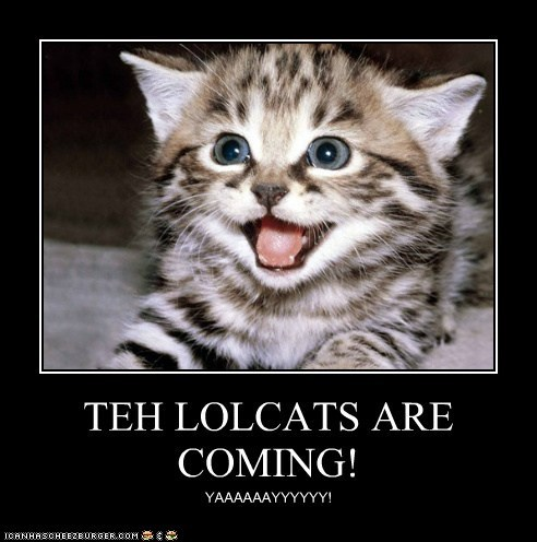 Teh LOLcats Are Coming!  Exciting Cheezburger News!