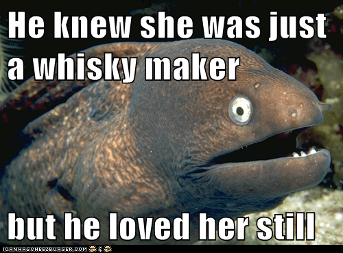Bad Joke Eel: Drunk Love