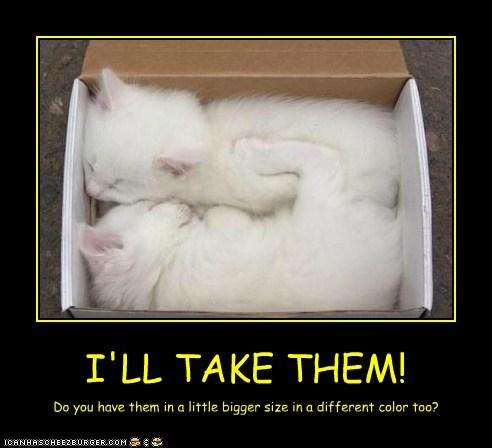 I'LL TAKE THEM!