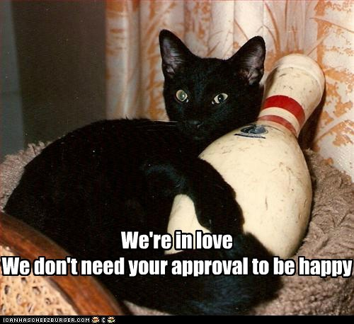 approval,basement cat,bowling,bowling pin,caption,captioned,cat,couple,cuddling,happy,love,pin