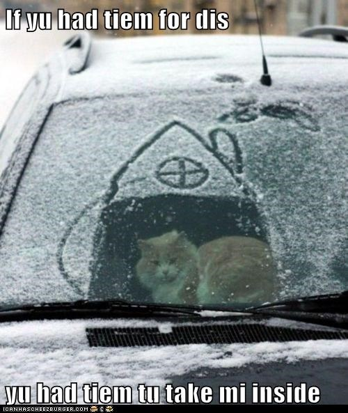 bitter,caption,captioned,car,cat,do not want,house,just saying,point,snow,tabby,time,upset,valid