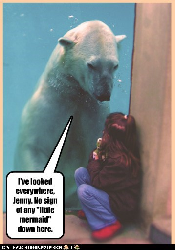 Can You Ask the Walrus to Look?