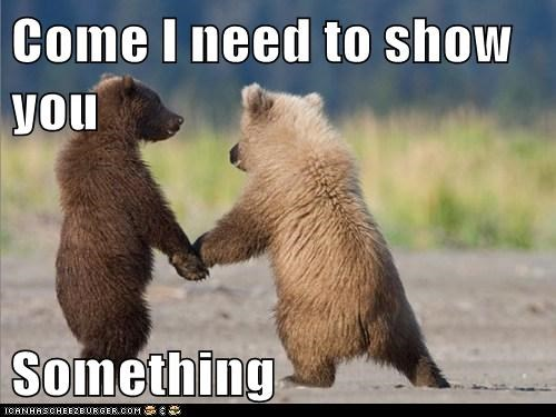 bear,bear cubs,bears,caption,come here,cubs,cute,friends,holding hands,paws