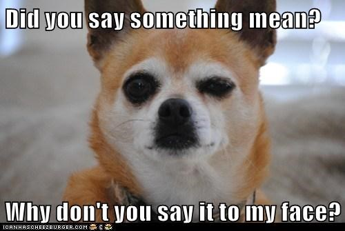 Did you say something mean?  Why don't you say it to my face?
