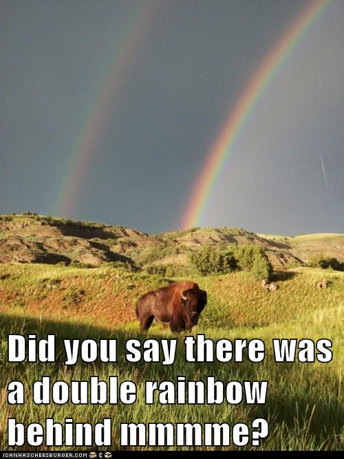 Did you say there was a double rainbow behind mmmme?